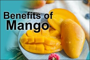 Know about mango benefits in this mango session