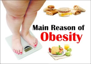 What the main Reason of obesity ,causes of Weight Gain