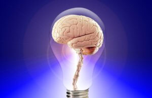Eat These 12 things and Boost Your Memory Power