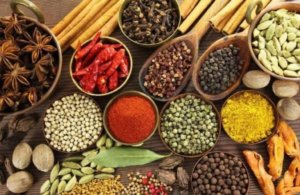 These 5 Ayurvedic Medicines Help in Weight Loss
