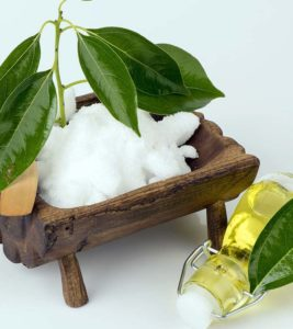 Advantages and disadvantages of camphor