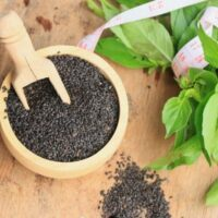 Five Benefits Of Basil Seeds That May Change Your Perspective