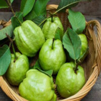5 Dangerous Diseases will keep away from Guava